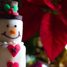 Il Forno Pralormo Slide Natale 03 Torte decorate